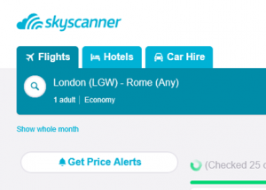 Skyscanner Whole Month Option